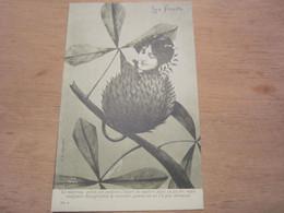 Carte Postale  Les Fruits Le Marron - Altri
