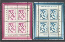PAYS-BAS. YT  Vignette Fusée  Neuf **  1960 - Otros