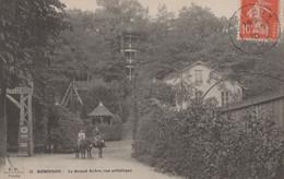 TF - 92 - ROBINSON - 2cartes - Le Grand Arbre Et Le Château Du Moulin - La Pièce D'eau - Le Plessis Robinson