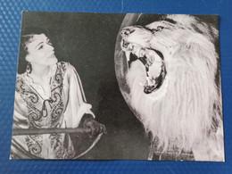 Soviet Circus. Trained Lion (animal Trainer Bugrimova). 1960s - Circus
