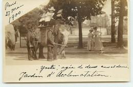 Carte Photo - PARIS - Jardin D'Acclimatation - Eléphant Yvette âgée De Deux Ans Promenant Des Enfants Sur Son Dos - Parchi, Giardini