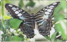 Thailand Phonecard Thaicard CAT Schmetterling Butterfly Papillon Private Card Mint RRR - Thailand