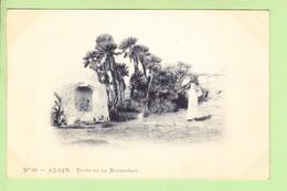 ALGERIE - ALGER - Puits Animé De La BOUZAREAH - Photo Arnold VOLLENWEIDER - Dos Simple - 2 Scans - Alger