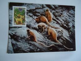 BHUTAN     POSTCARDS  MAXIMUM CARDS  WWF 2 SCAN - Bhutan