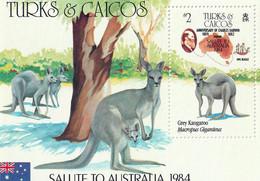 ILES TURQUES ET CAIQUES (TURKS & CAICOS) - Faune, Kangourou Gris, Salute To Autralia - BF 54 - MNH - 1984 - Turks E Caicos
