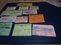 LOT DE 12  TICKETS PETIT TRAIN TOURISTIQUE  EN FRANCS  VOIR DETAIL - Toegangskaarten