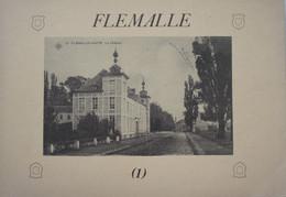 Livre FLEMALLE Ivoz Ramet Chokier Awirs Horion Hozémont 110 Cartes Postales Anciennes Liège - Belgien