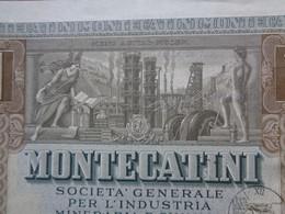 ITALIE - MILANO 1948 - MONTECATINI : INDUSTRIE CHIMIQUE ET MINIERE - TITRE DE 1 ACTION DE 500 LIRES - Unclassified