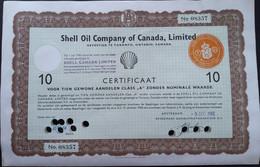 Shell CANADA - Petróleo