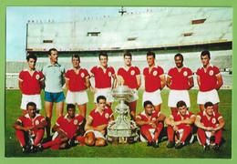 Lisboa - PHOTO (reprodução) - Equipa De Futebol Do Sport Lisboa E Benfica Football Estádio Stadium Stade Portugal - Soccer