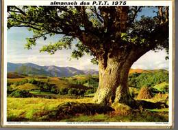 CALENDRIER GF 1975 - St Gervais 74 Haute-Savoie, Vallée Lanne àBarcus 64 Pyrénées A, Imprimeur Oller (calendrier Double) - Big : 1971-80