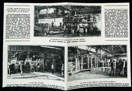 ► NEUVES-MAISONS HOMECOURT - ACIERIE  Les Trains D'Usine   - Début XXe Coupure De Presse (Encadré Photo) - Documentos Históricos