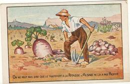 Potasse D'Alsace -  Publicité - On Ne Peut Pas Dire Que Le Traitement à La Potasse D'Alsace Ne Lui A Pas Profité  75 - Publicité