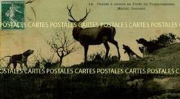 Chasse à Courre En Forêt De Fontainebleau Hallali Courant Belle Carte Toilée Vernissée Couleur - Hunting