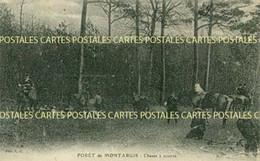 Chasse à Courre En Forêt De Montargis Le Repos - Hunting