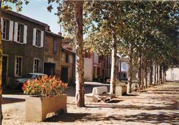 "/ CPSM FRANCE 82 ""Mas Grenier, Les Allées Fleuries"" - Other Municipalities"