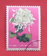 China 1960 - Used (o) - Mi 573 - Chrysanthemum - Chine --- 46 - Gebruikt