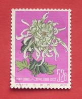 China 1960 - Used (o) - Mi 575 - Chrysanthemum - Chine --- 47 - Gebruikt