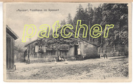 Forsthaus Aurora (Spessart, Neustadt/Main, Lohr) 1919 - Lohr