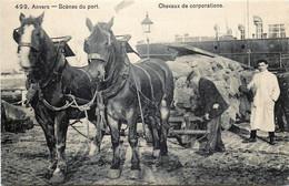 Belgique - Anvers - Scènes Du¨Port - Chevaux De Corporations - Antwerpen