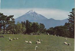 Nieuw-Zeeland - Taranaki - Mount Taranaki And The Pasture Islands Of Taranaki - Kleur/color - Gebruikt - New Zealand
