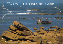 29 - La Côte Du Léon - Récolte Du Goémon - Unclassified