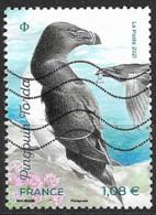 """France 2021 Oblitéré  N° 5461 -  """"  Pingouin Torda  """"  à  1,08 €  """"  Oiseaux Des îles """" - Used Stamps"""