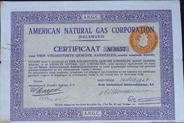 American Natural Gas Corp. Ned Cert. - Sin Clasificación