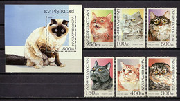 Azerbaijan 1995 / Cats MNH Gatos Katzen Chats / Cu1018  33-54 - Domestic Cats