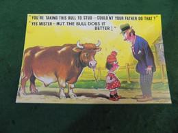 SEASIDE HUMOUR: You're Taking This Bull To Stud Taylor Bamforth - Humor