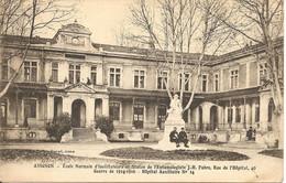 Avignon Ecole Normale D'Instituteurs Statue De JH Fabre 1917 - Avignon
