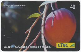 BRASIL K-064 Magnetic CTBC - Plant, Vegetable, Fruit - Used - Brasil
