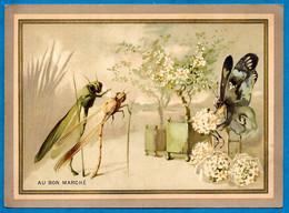 """CHROMO """"AU BON MARCHE"""" Insectes Dont Papillon - Au Bon Marché"""