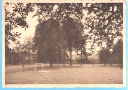 Kain (Tournai)-Collège Notre Dame De La Tombe-La Plaine De Jeux-Terrain De Football-écrite En 1937 - Tournai