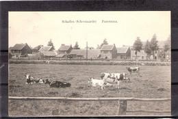 Schaffen  ( Schoonaarde )   Panorama - Diest