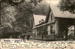 België - Bruxelles Brussel - Laiterie Du Bois - Cafe - 1903 - Unclassified