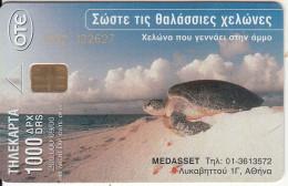 GREECE - Turtle, 09/00, Used - Tartarughe