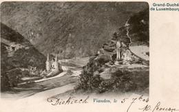 LuxembourgCB448ViandenVue Du ChâteauCirculée 1904 - Vianden