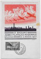 Bologna - 3° Raduno Aereo-Filatelico Nazionale (3/4 Maggio 1947). Illustratore R. Franzoni. Annullo. - Bologna