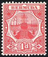 * Set Of 14. VF. - Bermuda
