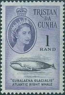 * Set Of 13. Complete Set. SUP. - Tristan Da Cunha