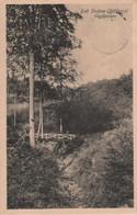 Bad Sachsa - Teufelsbrücke - 1910 - Bad Sachsa
