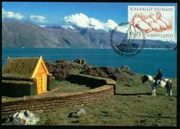 Mk Greenland Maximum Card 2000 MiNr 347 | Greenland Vikings. Walruses - Maximum Cards