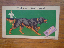Assez Rare , Image Pub Chocolat Suchard , Setter Gordon ) - Suchard