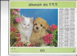 ALMANACH  PTT  1971  -  CHAT  Et  CHIENS - Big : 1961-70