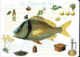 Le Maigre Des îles - éditions Mirontaine - Neuve - Recipes (cooking)