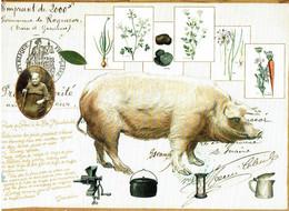 Pieds De Porc à La Menehould - éditions Mirontaine - Neuve - Recipes (cooking)