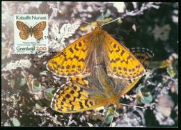 Mk Greenland Maximum Card 1997 MiNr 301 Y (fl) | Butterflies. Arctic Fritillary - Maximum Cards