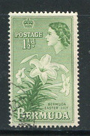BERMUDES- Y&T N°135- Oblitéré (fleurs) - Bermuda