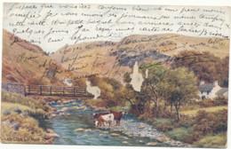 I. Of Man, Sulby Glen (1922) - Isle Of Man